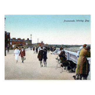 """Postal vieja - la """"promenade"""", bahía de Whitley"""