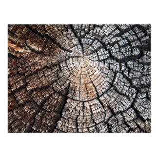 Postal Vieja textura de madera fresca