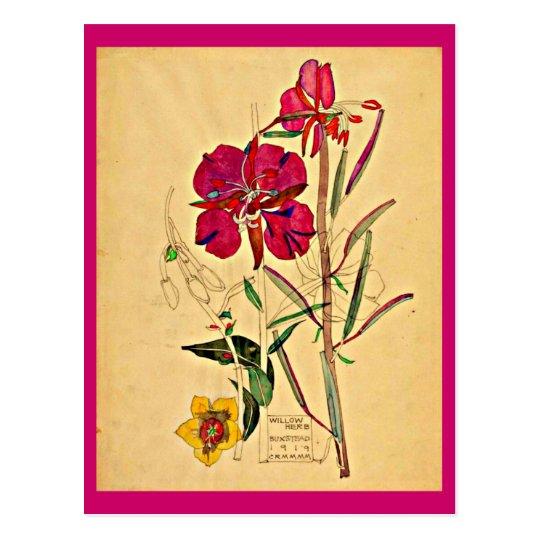 Postal-Vintage Arte-Charles Rennie Mackintosh 26 Postal