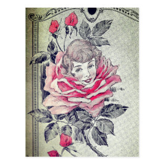 Postal Vintage color de rosa rosado de señora Postcard el