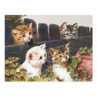 """Postal Vintage de """"cuatro gatitos"""""""