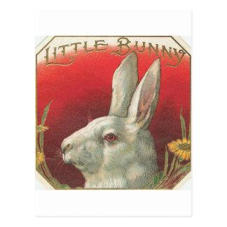 Postal Vintage poco conejo de conejito