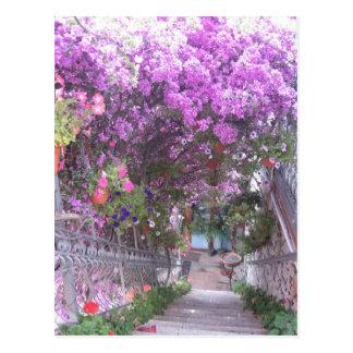 Postal violeta de la visión
