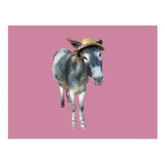 Postal Violeta el burro en gorra de paja con las flores