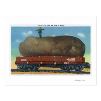 Postal Vista de la clase de patatas aumentadas en Maine