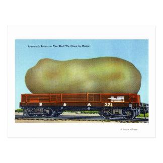 Postal Vista de una patata de Aroostook en una carretilla