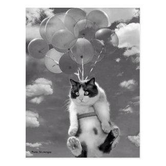 Postal: Vuelo divertido del gato con los globos Postal