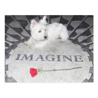 Postal Westie se imagina paz de mundo