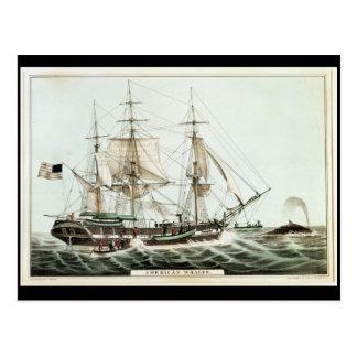 Postal Whaler americano, grabado por el curtidor de