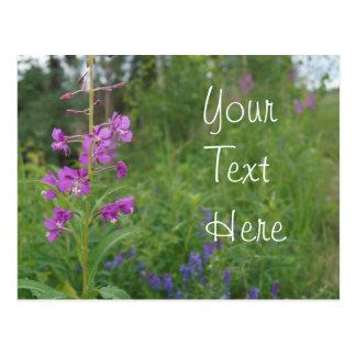 Postal Wildflower del Fireweed de Alaska