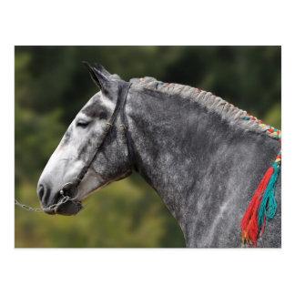 Postal Yegua del caballo de proyecto de Percheron