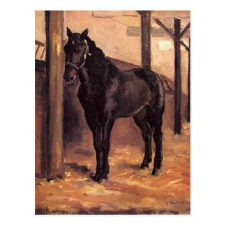 Postal Yerres, caballo de bahía oscuro en el establo de