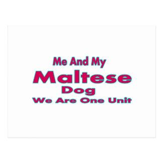 Postal Yo y mi perro maltés