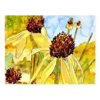 postales amarillas del coneflower