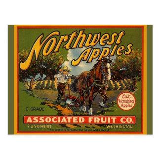 Postales del noroeste del caballo de proyecto de