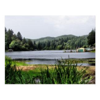 Postales del puerto deportivo del lago Sun