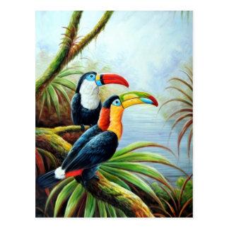 postales hermosas 02 de los pájaros