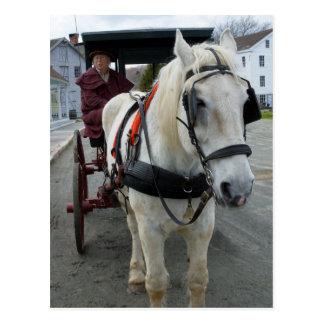 Postales místicas del caballo