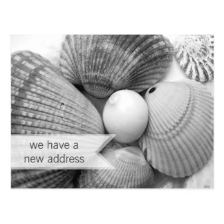Postales móviles blancos y negros de los Seashells