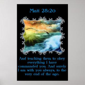 Póster 28:20 de Matt con las gaviotas que vuelan sobre el