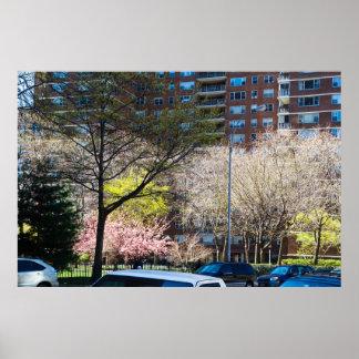 Póster 59.o Central Park de la calle del sur