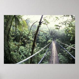 Póster America Central, Costa Rica, nube de Monteverde