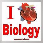 Póster Amo biología