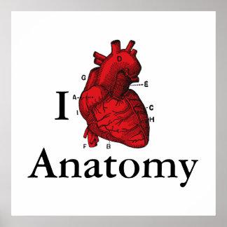 Póster Amo la anatomía