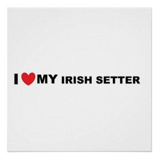 Póster amor del setter irlandés