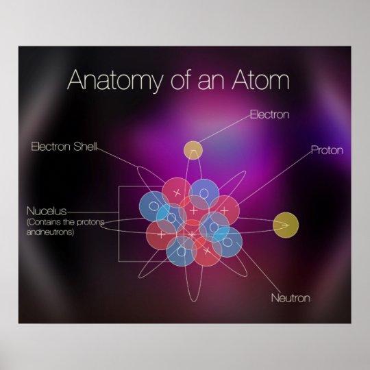 Póster Anatomía de un poster del átomo | Zazzle.es