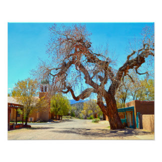 Póster Árbol colgante viejo, Cerrillos, New México