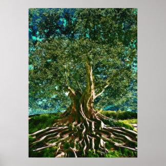 Póster Árbol del verde de la vida