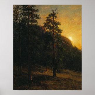 Póster Árboles de la secoya de Albert Bierstadt