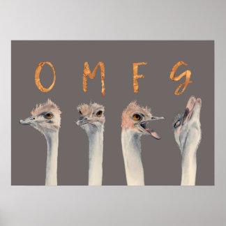 Póster Avestruces de OMFG