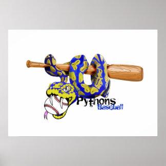 Póster Béisbol de los pitones