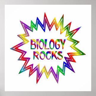 Póster Biología Rocis