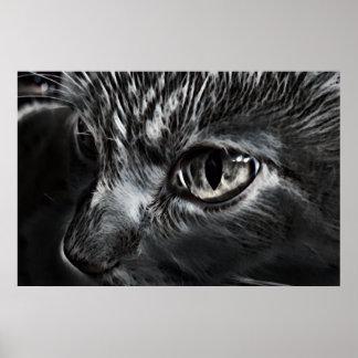 Poster blanco y negro del gato póster