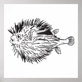 Póster blowfish del porcupinefish aka