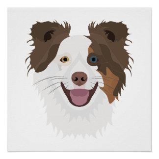 Póster Border collie feliz de la cara de los perros del