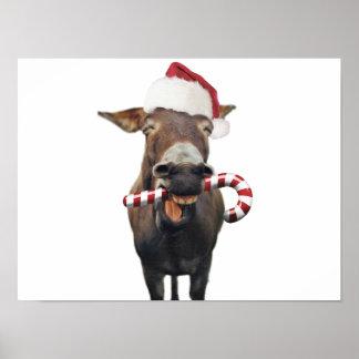 Póster Burro del navidad - burro de santa - burro santa