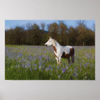 Póster Caballo en un campo de flores
