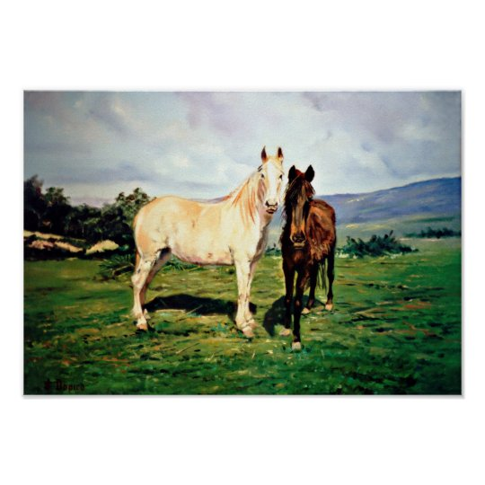 Póster Caballos/Cabalos/Horses
