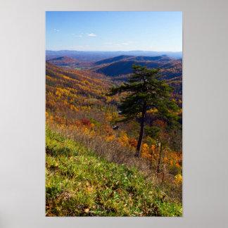 Póster Caída en el parque nacional de Shenandoah,