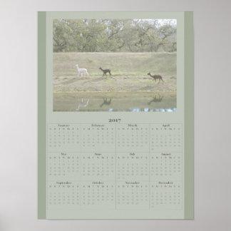 Poster - calendario 2017 de la alpaca póster