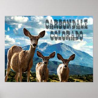 Póster Carbondale, poster de Colorado
