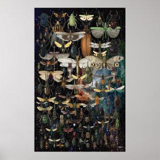 Póster cascada de insectos y de mariposas