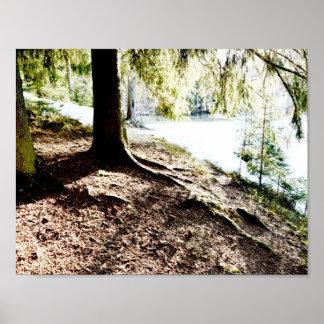 Póster Charca del bosque