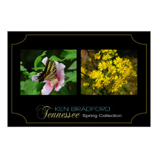 Póster Colección de la primavera de Tennessee - Ken