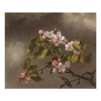 Póster Colibrí y flores de Apple