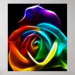 Póster Color de rosa hermoso del No3 de los colores